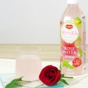 「こんな飲み物が欲しい…」、女子大生とキッコーマンが開発した飲料水とは